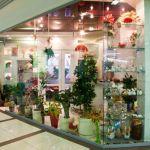 Салон цветов «Primo Fiore»